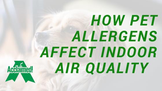 pet allergens indoor air quality edmonton Alberta